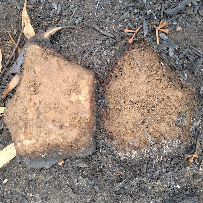 stone flipped over to reveal mirror unburnt ground surrounded by ash