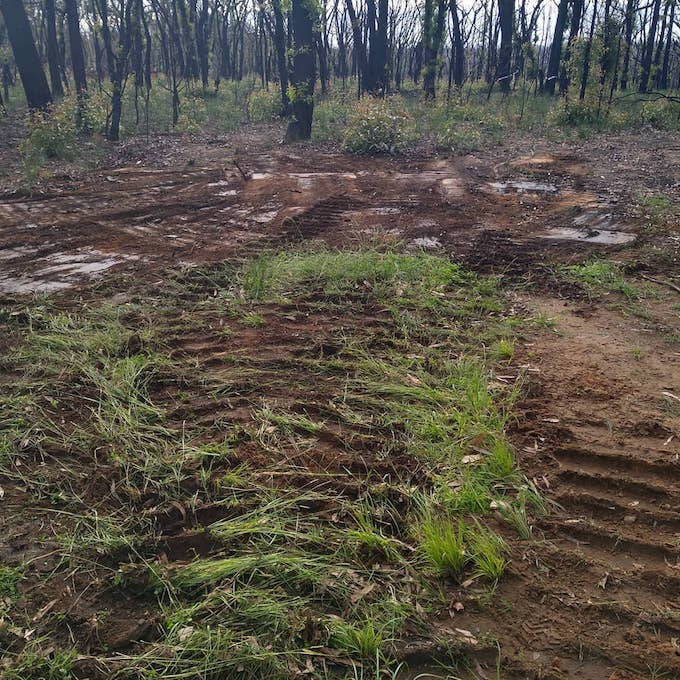 cleared space with deep grooves from machinery and burnt trees in background